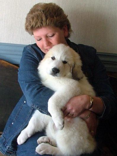 Jergan pup 9 weken