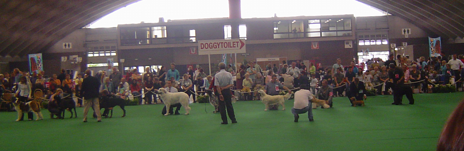 Selectie erering Jeugdhonden Mechelen 2006